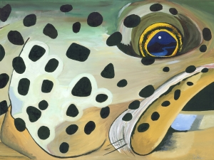 Brown Trout Face Giclee